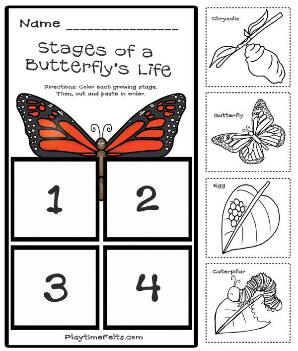 prep free butterfly life cycle printables for preschool. Black Bedroom Furniture Sets. Home Design Ideas