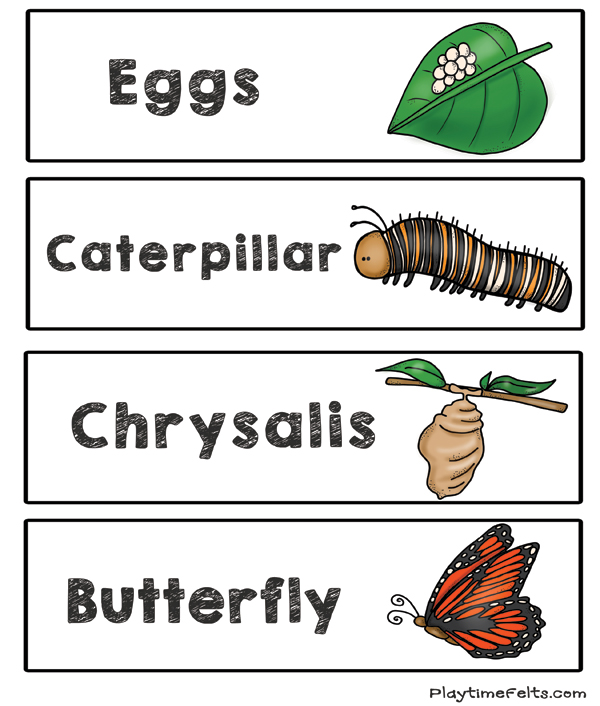 butterfly life cycle for preschool prep free butterfly cycle printables for preschool 723